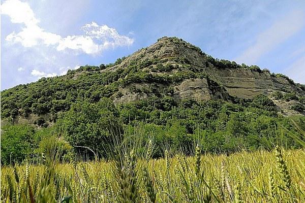 Agricoltura, campi, grano, montagna