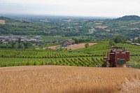 Campo coltivato, agricoltura, trattore