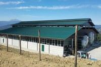 Azienda agricola Le Fontane a Pavullo, stalla