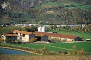 Azienda agricola, impresa agricola, agricoltura