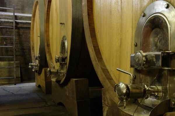 cantina botti vino