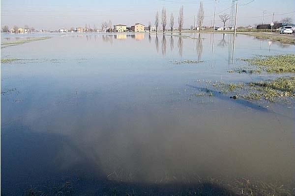 Campi allagati, danni in agricoltura, maltempo