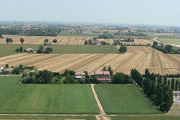 Campo, coltivazioni
