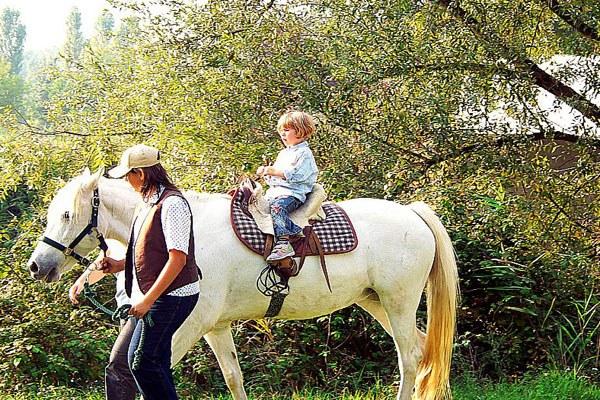 Cavallo, fattoria, bambino
