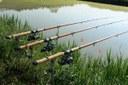 pesca lenza