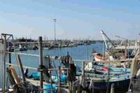 pesca porto