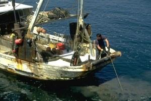 Pesca, peschereccio, pescatore