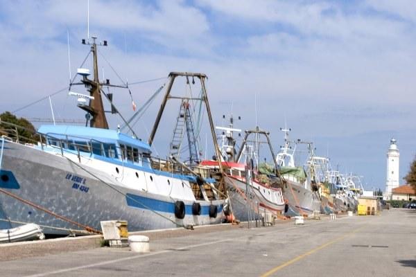 Barca pesca porto