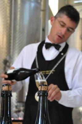 vino, calici, bottiglie, sommelier