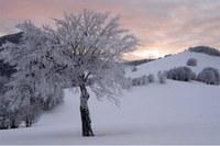 Appennino Tosco Emiliano, neve, montagna, inverno
