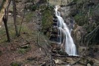Appennino, bosco, foresta, cascata