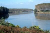 Delta del Po, fiume