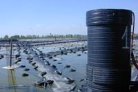 Discarica, rifiuti, immondizia, smaltimento pneumatici, gomma, ambiente