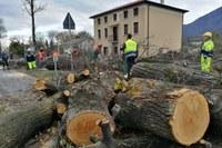 Emergenza Veneto colonna mobile protezione civile RER a Feltre Belluno novembre 2018 - 2