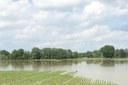 Maltempo campi allagati modena modenese alluvione (maggio 2019)