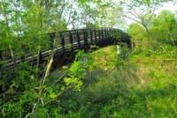 pista ciclabile Ponte legno Castrocaro