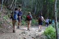sentiero, montagna, Appennino, escursionismo