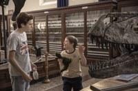 "Film: ""Mio fratello rincorre i dinosauri"""