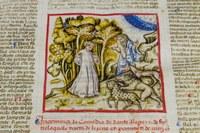 Codice miniato, Dante, Biblioteca Gambalunga Rimini
