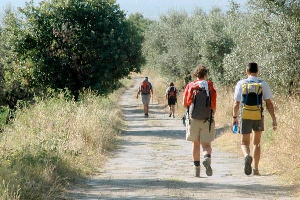 Via Francigena, turismo, turisti, cammino (1)