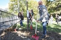 """""""Mettiamo radici per il futuro"""", Bonaccini, Priolo e Pasquali a Bobbio  piantano l'albero 26 sett. 2020"""