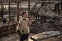 Venezia2019 - Mio fratello rincorre i dinosauri 2