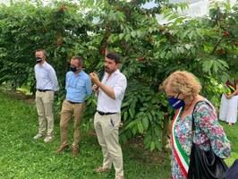 Inaugurazione campo sperimentale ciliegie Vignola con assessore Mammi e sindaca Muratori
