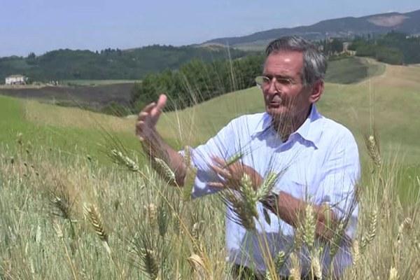 Salvatore Ceccarelli. Bologna Award (8/9/2015)