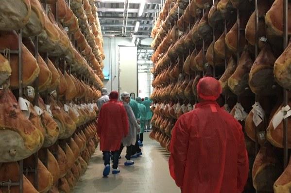 La Cina apre all'importazione di carne fresca suina italiana. Visita delegazione (gennaio 2018). Export. Agroalimentare - 3