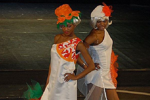 Moda, modelle, sfilata (2)