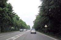 Strada, viabilità 2