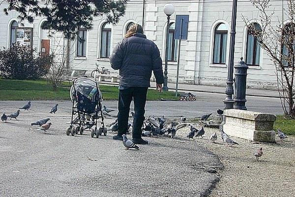 Famiglia, bambino, parco pubblico, persone, gente