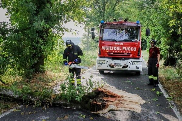 alberi caduti tromba d'aria