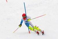 Criterium cuccioli sciatore, sport, sci