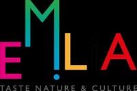 Destinazione turistica Emilia, logo