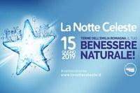 Notte celeste 2019