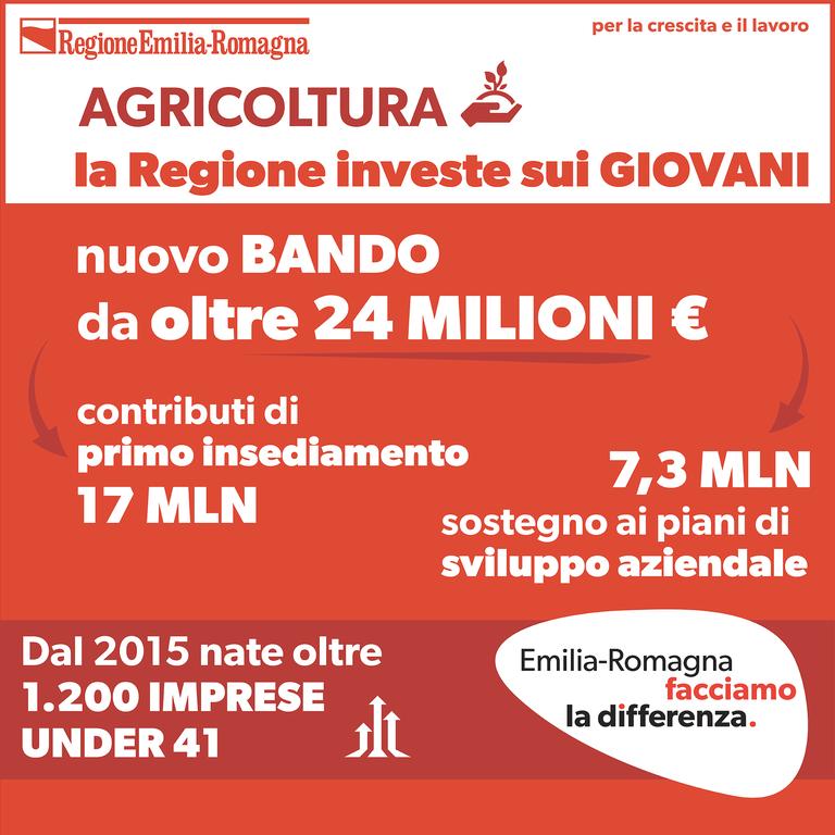 Agricoltura, la Regione investe sui giovani