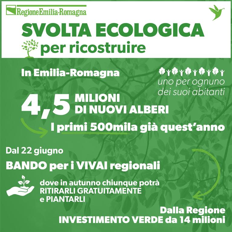 In Emilia-Romagna 4,5 milioni di nuovi alberi
