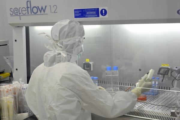 Aggiornamento Coronavirus, nove casi positivi all'ospedale di ...