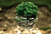 Degradazione dei suoli: il contributo del progetto Life Biorest